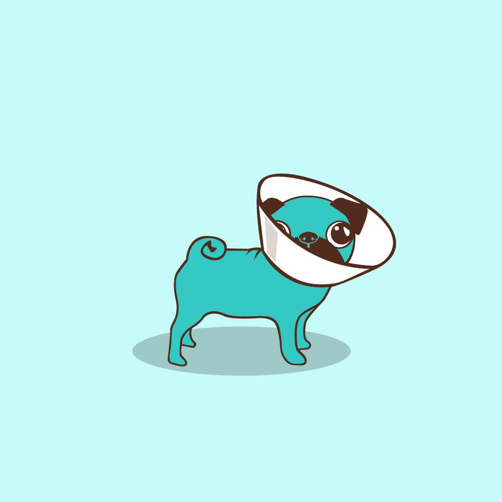 veterinary-branding-logo-graphic-design-identity-maria-del-castillo-graphic-designer-06